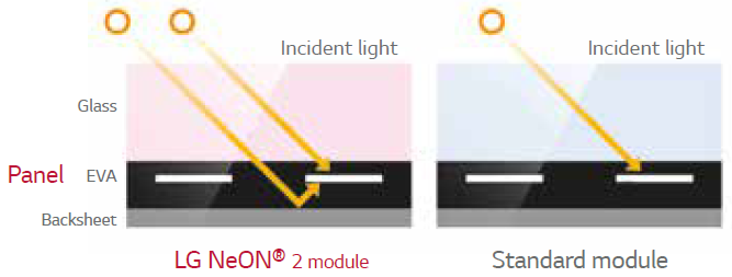 The NeON® Cell produces energy from both the front and the back of the cell because the panels absorb light from both sides